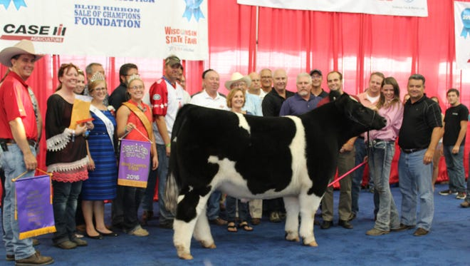Tori Crisp's (second from right) grand champion (crossbred) steer was purchased by KenoshaWisconsin $52,500, the highest bid of the 2016 Governor's Blue Ribbon Auction.