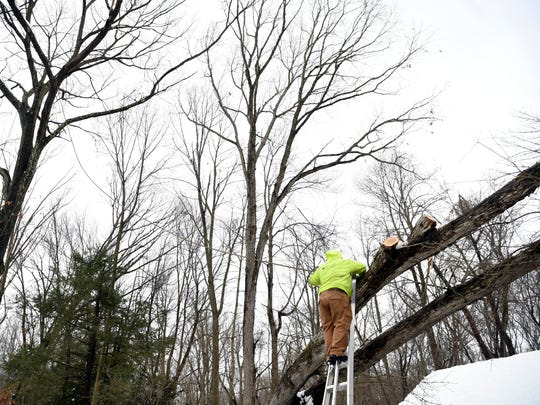 Mike Melet, a supervisor with Jersey Tree Care, hooks a line around a fallen tree on Thursday, March 8, 2018, to pull it off a home in Ramsey in the aftermath of the snowstorm.