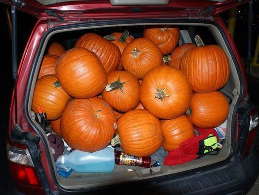 Vanishing Pumpkin Caper