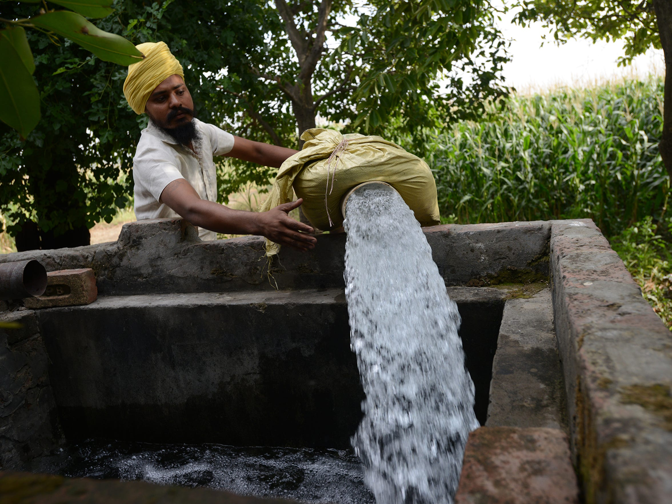 Kulwinder Singh Sanghera checks on one of the wells on his 20-acre farm in the state of Punjab in northern India. He is the third generation of his family to farm this land.