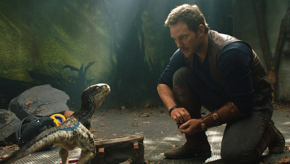 Owen (Chris Pratt) connects with a baby Velociraptor,