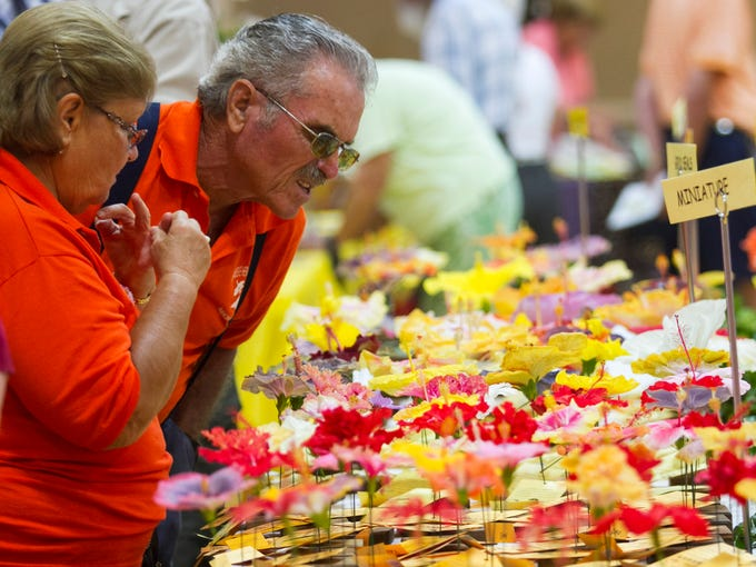 Edith and Sigi Steinle look at the many types of hibiscus