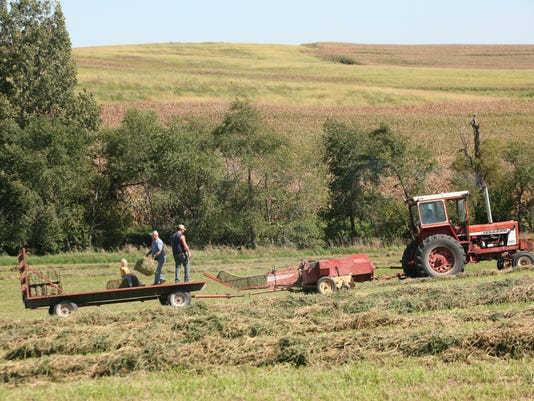 ITH Making-Hay