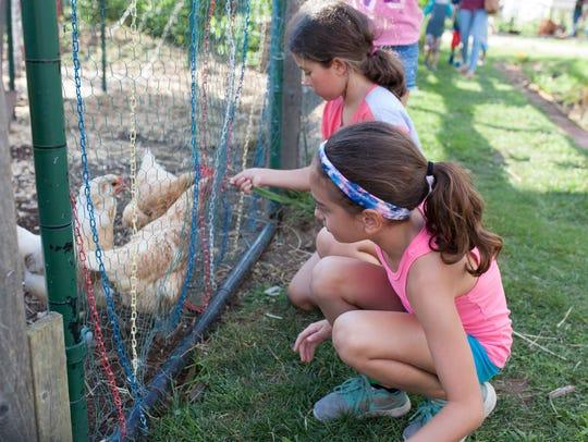 Kids enjoying everything The Urban Farm has to offer
