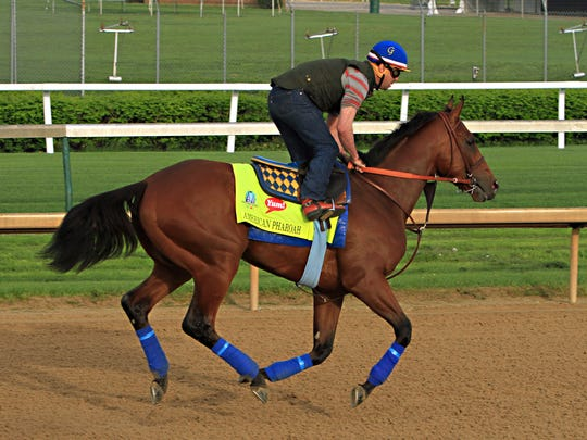 Exercise rider George Alverez gallops Kentucky Derby hopeful American Pharaoh over the track at Churchill Downs in Louisville, Ky., Saturday, April 18, 2015.  (AP Photo/Garry Jones)