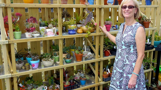 Succulents of multiple varieties can share one pot without fear of overcrowding. TOP: Master gardener Beth Patterson with succulents of every shape and size.