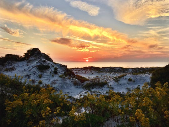 Bryan is being awarded due in part to his service to Florida's state park system, which includes scenery like St. Joseph's State Park at Cape San Blas.