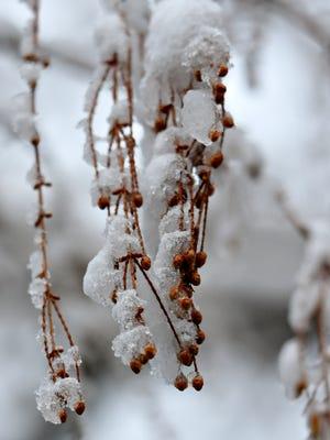 Snow in Springettsbury Township, Thursday, Feb. 9, 2017. Dawn J. Sagert photo