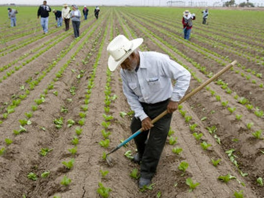 immigrant farmworkers as a vulnerable population Developing occupational and family resilience among us migrant farmworkers  focused on the population of farmworkers who are  immigrant farmworkers who.