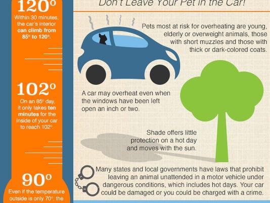 636349288916729923-hot-cars-infographic-061815.jpg