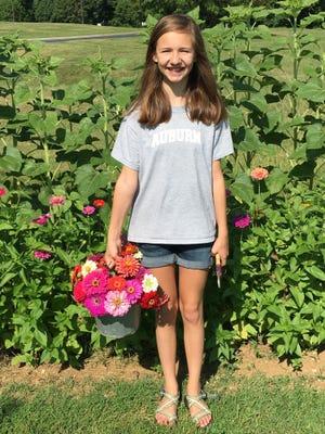 Addie Grace Leggett gathers a bouquet of fresh zinnias growing at Christ Community Church's Stewards Garden.