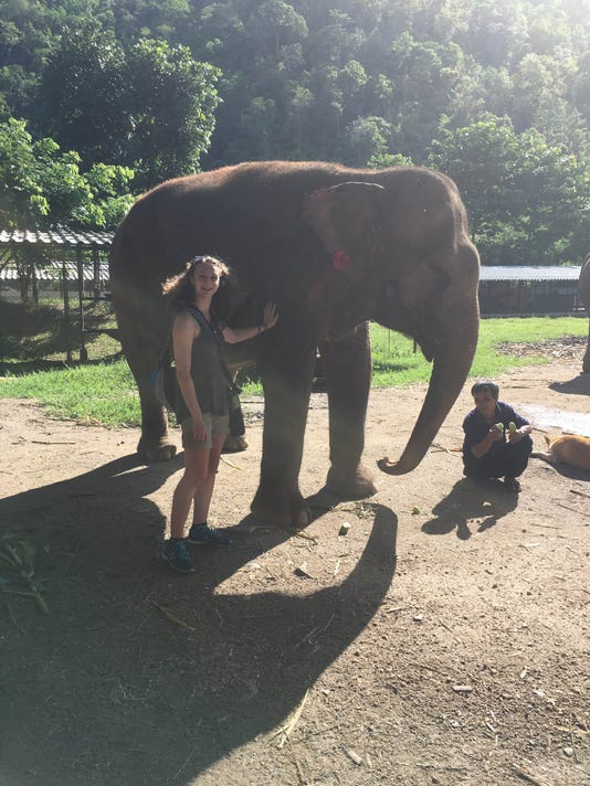 BMN 090116 Thailand elephant
