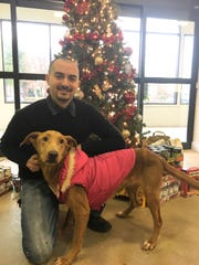 Walt Fenstermacher, Delaware Director of Operations for the Brandywine Valley SPCA, poses with Yams, one of the 14 dogs seized in Millsboro over Thanksgiving. Yams is one of three dogs that will be available for adoption on Wednesday, Dec. 14.