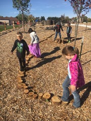 Students created a tree cookie road at the Riverview