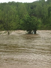 A view of the Buffalo River Wednesday, flowing about 5 feet above the Ponca bridge.