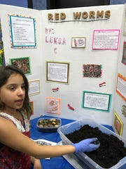 Leska Cardona gets a fist full of red worms during the 2017 science fair at Upper Greenwood Lake Elementary School in West Milford.