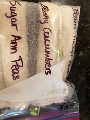 You can grow cucumbers, peas and beans with paper towels and zip-close bags for better germination. LEFT: Paper towels are a nice, affordable tool to use in the garden for germinating seeds.