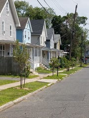 Tree-lined North Street in Bound Brook after a planting.