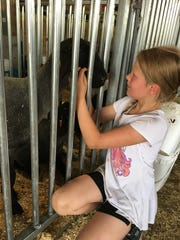 Mackenzie Ruthig, 9, scratches her sheep Jacob's face while waiting for their turn for auction.