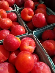Plums from McConnell Farms.