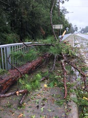 A large fallen tree broke through a fence near a turning