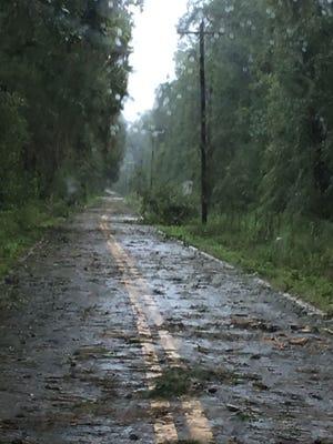 Debris everywhere, trees down.