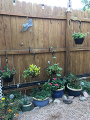 Judy Terry's daughter, Ann, has a small yard, but using hooks was able to install hanging planters on her fence to create more space for blooms.