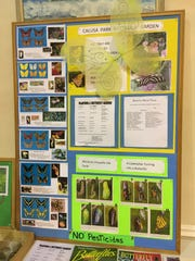 Display about Calusa Park Butterfly Garden prepared by Donna Kay and Susan LaGrotta.