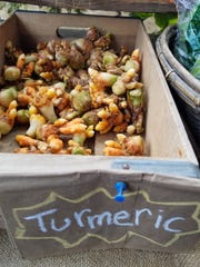 Locally grown turmeric is available at tailgate markets.