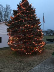 Mt. Juliet's community Christmas tree lit for the first