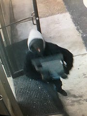 Wicomico County Sheriff's Office is looking for two males who robbed the Vintage Wine and Beer Store at 610 Snow Hill Rd. on Jan. 9