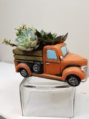 Add succulents to your home decor.