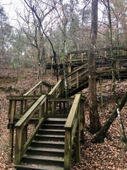 Stairs serve as an access point to a wooden boardwalk on the gorge trail at Bogue Chitto State Park in Franklinton.