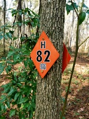 QR codes posted on all city trails help hikers stay