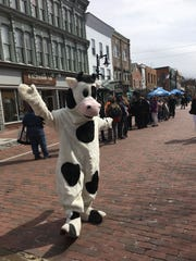 A cow comes out to celebrate Ben & Jerry's Free Cone