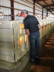 A participant in the Vita Plus Farm School checks out a row of hutches containing newborn calves at Pagel's Ponderosa Dairy.
