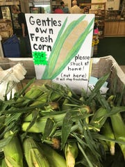 Sweet corn is in season at Gentles Farm Market, 1080
