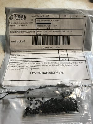Barbara Johnson, a Bridgewater resident, received this unsolicited package, which appears to be sent from China, containing mysterious seeds on Friday, July 24, 2020.