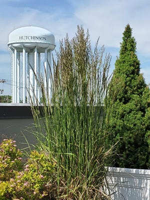A view of the Hutchinson water tower from the roof of The Link.