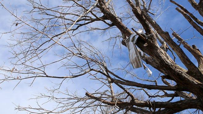 A piece of metal hangs in a tree in Selmer on Saturday.