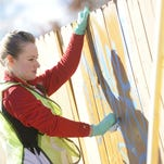 Laura Bradley uses a soy-based graffiti remover to take some blue paint off of a fence during a previous Make a Difference Day event.