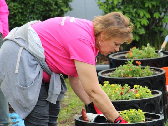 NRO 1 flower planting