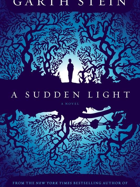A Sudden Light.jpg
