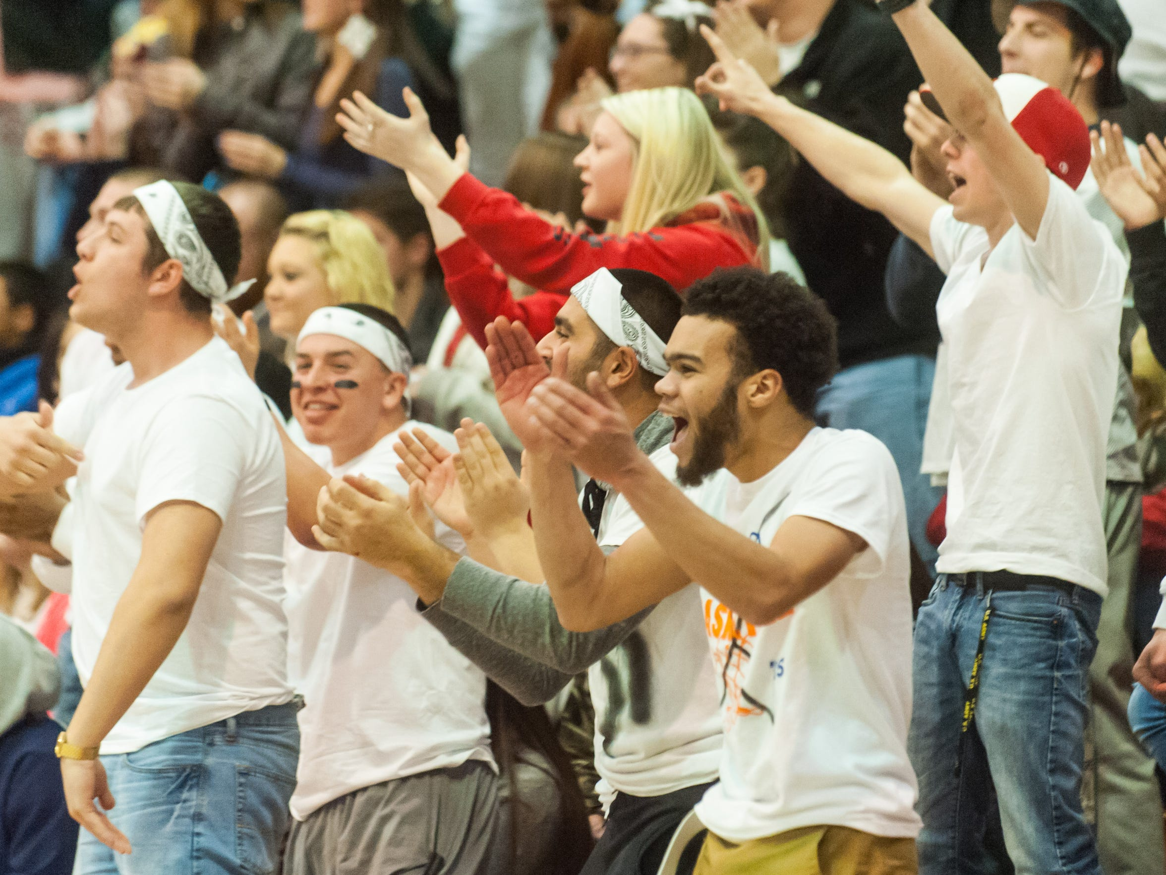 The Laurel Dawg Pound celebrates against Delmar at Laurel High on Thursday night.