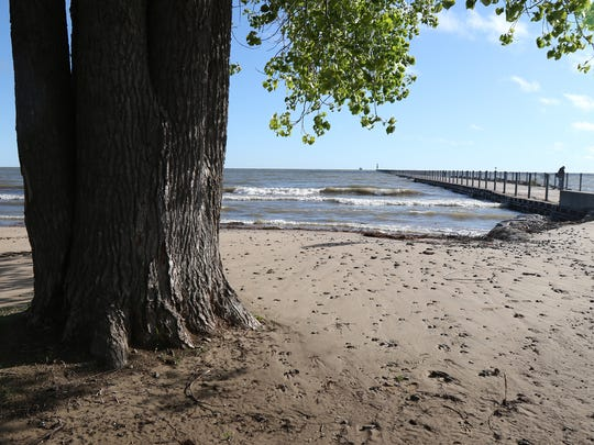 Water levels at Lake Ontario continue to rise cutting into the shoreline.  A big tree near the boardwalk at Ontario Beach Park is now a lot closer to the water.