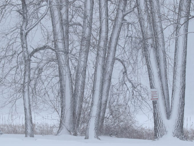 THE PHOTO:  Lake effect snow system was expected to
