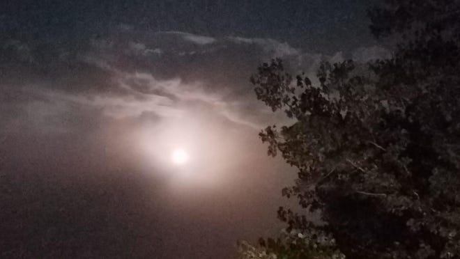 A recent moonlit night was captured by Lisa Tritt from Bolivar. Have you taken a nature photo you'd like to share with our readers? Send a .jpg image to hank.keathley@TimesReporter.com. Make sure you include information on who took the photo and where it was taken for caption information.