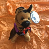 Wisconsin Rapids Police Department Sgt. K-9 Diego dons a cape for Halloween.
