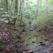 Land trust protects water, historic battlefield