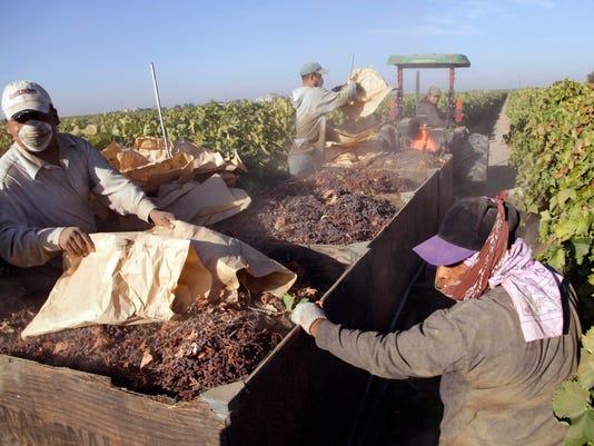 Immigration Farmworker Exodus